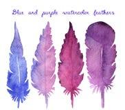 Σύνολο συρμένων χέρι φτερών watercolor Στοκ εικόνες με δικαίωμα ελεύθερης χρήσης