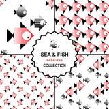 Σύνολο σχεδίων θάλασσας και ψαριών Στοκ Φωτογραφία
