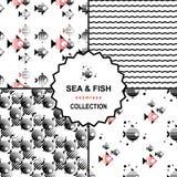 Σύνολο σχεδίων θάλασσας και ψαριών Στοκ εικόνες με δικαίωμα ελεύθερης χρήσης