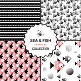 Σύνολο σχεδίων θάλασσας και ψαριών Στοκ εικόνα με δικαίωμα ελεύθερης χρήσης