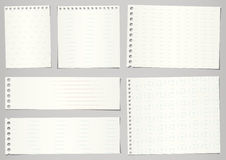 Σύνολο σχισμένων εγγράφων σημειωματάριων με τις γραμμές και το πλέγμα επάνω ελεύθερη απεικόνιση δικαιώματος