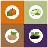 Σύνολο τεσσάρων εικονιδίων των λαχανικών Στοκ Εικόνες