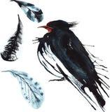 Σύνολο - το πουλί watercolor καταπίνει, hand-drawn σκίτσο του techniqu Στοκ Φωτογραφία