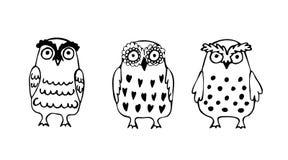 Σύνολο τριών αστείων κουκουβαγιών σκίτσων Στοκ φωτογραφίες με δικαίωμα ελεύθερης χρήσης