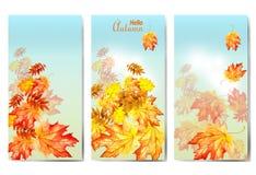 Σύνολο τριών εμβλημάτων με τα ζωηρόχρωμα φύλλα φθινοπώρου διανυσματική απεικόνιση