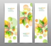 Σύνολο τριών διανυσματικών εμβλημάτων φύσης με τα floral στοιχεία Στοκ εικόνα με δικαίωμα ελεύθερης χρήσης