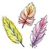 Σύνολο τριών φτερών watercolors Ελεύθερη απεικόνιση δικαιώματος