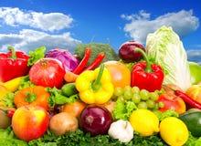 Σύνολο τροφίμων Στοκ Εικόνες