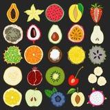 Σύνολο φρέσκων συρμένων χέρι εξωτικών φρούτων και προϊόντων Στοκ Φωτογραφίες