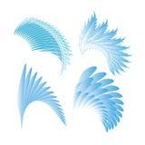 Σύνολο φτερών για έναν άγγελο σε ένα άσπρο υπόβαθρο Στοκ εικόνες με δικαίωμα ελεύθερης χρήσης