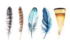 Σύνολο φτερών Watercolor που απομονώνεται στο άσπρο υπόβαθρο Στοκ εικόνες με δικαίωμα ελεύθερης χρήσης