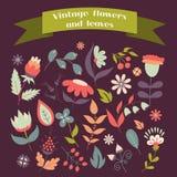 Σύνολο χαριτωμένων λουλουδιών και άδειας doodle Στοκ Εικόνες