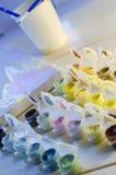 Σύνολο χρωματισμένων ακρυλικών χρωμάτων Στοκ Εικόνες