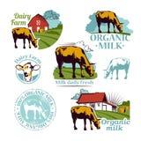 Σύνολο χρωματισμένων αναδρομικών αγροτικών διανυσματικών εικονιδίων που απεικονίζουν μια αγελάδα ένα φρέσκο λ Στοκ φωτογραφίες με δικαίωμα ελεύθερης χρήσης