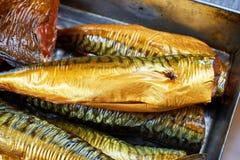 σύνολο ψαριών που καπνίζε& Στοκ εικόνες με δικαίωμα ελεύθερης χρήσης