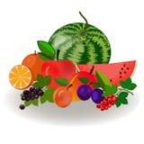 Σύνολο όμορφων ζωηρόχρωμων εικονιδίων φρούτων επίσης corel σύρετε το διάνυσμα απεικόνισης Στοκ εικόνα με δικαίωμα ελεύθερης χρήσης