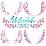 Σύνολο floral πλαισίων watercolor Στοκ Φωτογραφία