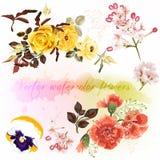 Σύνολο floral σχεδίων στο ύφος watercolor με τα λουλούδια Στοκ φωτογραφίες με δικαίωμα ελεύθερης χρήσης
