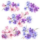 Σύνολο floral σχεδίων στο ύφος watercolor με τα λουλούδια Στοκ Εικόνες
