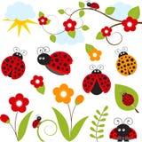 Σύνολο Ladybug Στοκ φωτογραφία με δικαίωμα ελεύθερης χρήσης