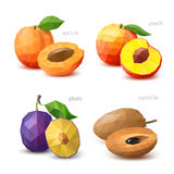 Σύνολο polygonal φρούτων - βερίκοκο, ροδάκινο, δαμάσκηνο, sapodilla διάνυσμα Στοκ Εικόνες