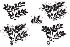 Σύνολο spikelets λουλουδιών Στοκ φωτογραφία με δικαίωμα ελεύθερης χρήσης