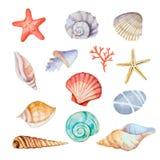 Σύνολο Watercolor θαλασσινών κοχυλιών Στοκ φωτογραφία με δικαίωμα ελεύθερης χρήσης