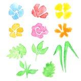 Σύνολο Watercolor λουλουδιών και φύλλων Στοκ εικόνες με δικαίωμα ελεύθερης χρήσης