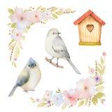 Σύνολο Watercolor πουλιών, λουλούδια και birdhouses Στοκ εικόνες με δικαίωμα ελεύθερης χρήσης