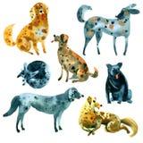 Σύνολο Watercolor σκίτσων των σκυλιών Στοκ Εικόνες