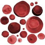 Σύνολο watercolor burgundy, redwood, σκούρο κόκκινο κύκλοι Watercolour γύρω από τα στοιχεία Στοκ Εικόνα