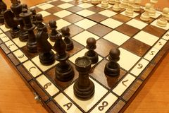σύντροφος παιχνιδιών ήττας σκακιού Στοκ φωτογραφία με δικαίωμα ελεύθερης χρήσης