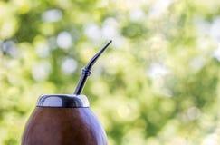 Σύντροφος Yerba στο matero κολοκυθών σε πράσινο Στοκ Εικόνα