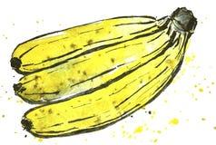 Σύνδεση των μπανανών Στοκ Εικόνα