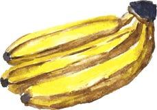 Σύνδεση των μπανανών Στοκ Φωτογραφία
