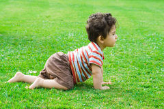 σύρσιμο μωρών Στοκ Εικόνες
