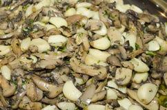 Σύσταση - ένα πιάτο των τεμαχισμένων κονσερβοποιημένων μανιταριών με τα γαρίφαλα σκόρδου Στοκ Εικόνες