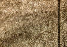 Σύσταση δέρματος, χρυσό χρώμα φορεμάτων δέρματος, το λαμπρό textur δερμάτων Στοκ Εικόνες