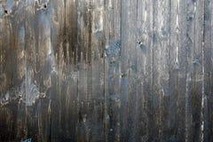 Σύσταση ή ανασκόπηση Ξύλινη σύσταση κάπρων χρωματισμένος με το φυσικό πετρέλαιο κερί μαστίχα μίμηση των πολύτιμων ειδών ξύλου στοκ φωτογραφία με δικαίωμα ελεύθερης χρήσης