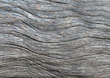 σύσταση ανασκόπησης driftwood Στοκ Εικόνες