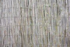 σύσταση αχύρου μπαμπού Στοκ εικόνες με δικαίωμα ελεύθερης χρήσης