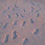 Σύσταση - βήματα στην αμμώδη παραλία στοκ εικόνες