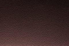 Σύσταση δέρματος ή υπόβαθρο δέρματος για την εξαγωγή βιομηχανίας Επιχείρηση μόδας σχέδιο επίπλων και εσωτερική έννοια ιδέας διακο Στοκ εικόνες με δικαίωμα ελεύθερης χρήσης