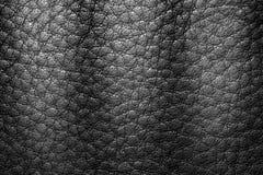 Σύσταση δέρματος ή υπόβαθρο δέρματος για το σχέδιο Στοκ Φωτογραφίες