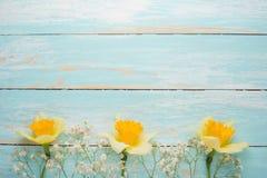 Σύσταση ενός δέντρου με τα κίτρινα λουλούδια Τοπ άποψη, με το κενό διάστημα για την επιγραφή ή τη διαφήμιση στοκ εικόνες
