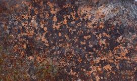 Σύσταση ενός παλαιού οξυδωμένου φύλλου σιδήρου μετάλλων Σκηνικό σύστασης σκουριάς Στοκ Εικόνα