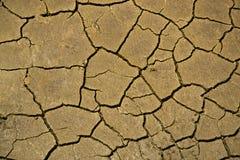 Σύσταση ερήμων Στοκ Εικόνα