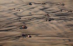 σύσταση θάλασσας άμμου ανασκόπησης Στοκ Φωτογραφίες