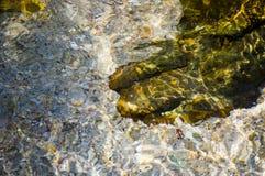 Σύσταση καθαρού νερού, με τους κυματισμούς και τις αντανακλάσεις ήλιων, στο καλοκαίρι Στοκ Φωτογραφίες