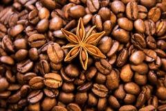 Σύσταση καφέ με το καρύκευμα Ψημένα φασόλια καφέ ως ταπετσαρία υποβάθρου Όμορφη arabica πραγματική απεικόνιση φασολιών cofee για  Στοκ Εικόνα